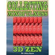 Collecting Mindfulness: 3D Zen