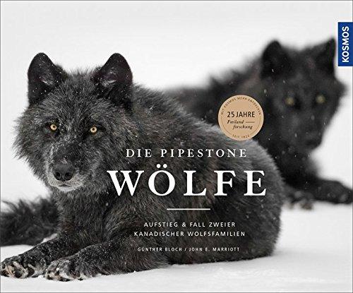 die-pipestone-wolfe-aufstieg-und-fall-zweier-kanadischer-wolfsfamilien