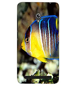 ASUS ZENFONE 6 A601CG FISH Back Cover by PRINTSWAG