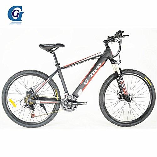 G & G G8 26 Zoll verstecktes Batterie-elektrisches Fahrrad, 48V 250W, Aluminiumlegierungs-Rahmen, Scheibenbremse, 24 beschleunigen E-Mountainbike, Sprach-Rad (Schwarz Speichenrad)