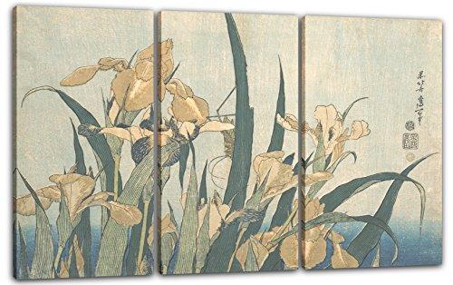 Printed Paintings Leinwand 3-teilig(120x80cm): Katsushika Hokusai - Grashüpfer und Iris - Katsushika Hokusai