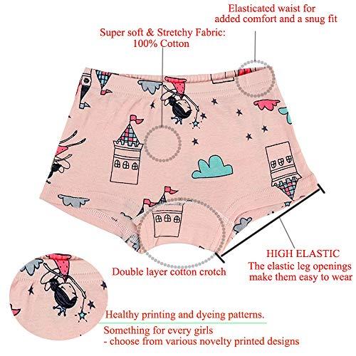 eda8ea5768 Kidear Intimi per Bambini di Serie Kid Mutandine Culotte in Cotone per  Bambine Piccole (Confezione da 6) (Stile2, 2-3 Anni)