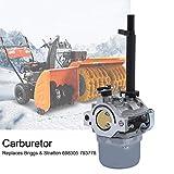 Kit carburatore per soffiatore a neve, Briggs & Stratton 698305 793778