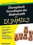 Übungsbuch Grundlagen der Mathematik für Dummies - Mark Zegarelli