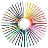 Ensemble de 48 crayons aquarelle - Assortiment de couleurs vibrantes, utilisés par les artistes, les designers et les adultes faisant du coloriage. Pinceau et taille-crayon gratuits. Fils forts, facile à mélanger. Non-toxique. Garantie satisfait ou remboursé.