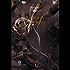 Il duca di ferro - The iron duke