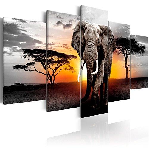 Murando   Cuadro Africa Elefante 100x50 cm   impresión