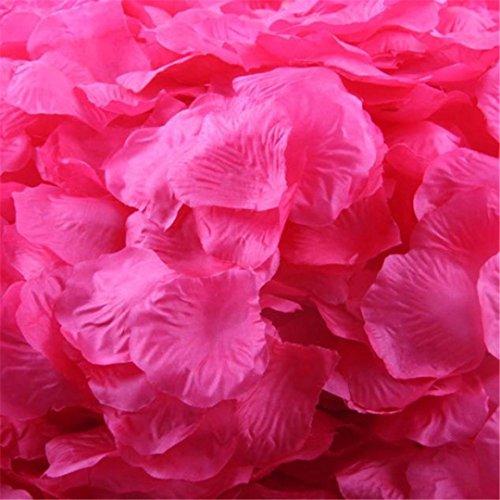 Rosenblüte Silk künstliche Blumen Blätter Rosen Blumenblatt Hochzeitsfest Dekorationen Valentinstag romatische Überraschung Rosenblätter (Watermelon Red) (Bulk-rosenblätter)