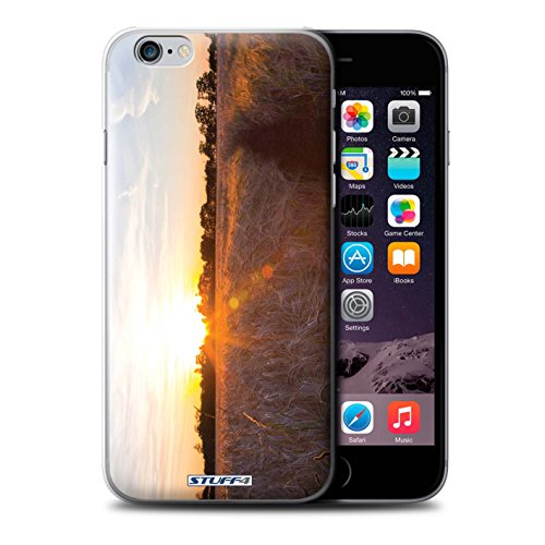 STUFF4 Phone Case / Cover for iPhone 6+/Plus 5.5 / Treeline Design / Sunset Scenery Collection Tempo di raccolto