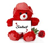 TiedRibbons Valentines Day Gift for Boyfriend Teddy Bear with Valentine's Special Greeting card and Red Rose