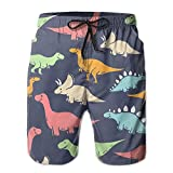 cleaer Man Quick Dry Beach Shorts Gray Blue T Rex Stegosaurus Dinosaurs Surf Shorts with Pockets X-Large