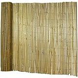 Suchergebnis Auf Amazonde Für Bambus Gartensichtschutz