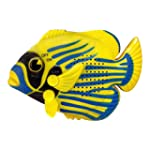 Mini Angel Fish Shower Radio (added t...