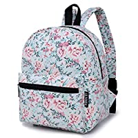 Lily & Drew Lightweight Mini Canvas Daypack Rucksack Backpack (Flower Blue)