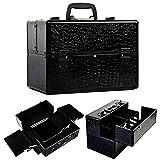 Safstar Professional Makeup Train Case Artist Cosmetic Organizer Kit Jewelry Box Lockable for Travel, 14' X 9' X 10', Black