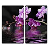 FTB Gsmarkt | Herdabdeckplatten Schneidebrett Spritzschutz Set 2x30x52 | Bild auf Glas | Sicherheitsglas Gehärtetes Glas Bild | Motiv Orchidee