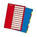 Herlitz Ringbuch-Register A4, 10-teilig PP-Folie, Eurolochung