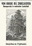 VON BUCHE BIS ZIRBELKIEFER, Baumporträts in malerischer Landschaft. Holz-Stich-Kunst des 19. Jahrhunderts (Wandkalender 2019 DIN A2 hoch)