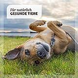 AniForte® PureNature EasyBarf Hundefutter- Naturprodukt für Hunde (Pferd Pur, 6x800g) - 4