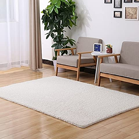 SANNIX Home Decorator Modern Shag Area Rugs Super Soft Solid