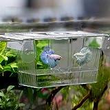 Quanjucheer acquario Guppy doppio allevamento Allevatore la trappola box Incubatrice per malati e gravidanza Fish