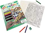 Royal & Langnickel Colour Pencil by Numbers Jaguar by Pool Designed Painting Set