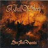 Songtexte von Wall of Sleep - Sun Faced Apostles