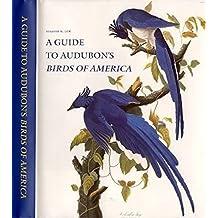 The Birds of America (English Edition)