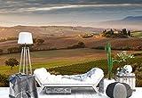 Vlies Fototapete Fotomural - Wandbild - Tapete - Rollfelder Villa Landschaft - Thema Wiesen und Landschaft - XXL - 416cm x 290cm (BxH) - 4 Teilig - Gedrückt auf 130gsm Vlies - 1X-421555VEXXXXL