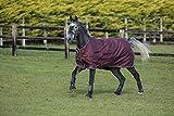 Horseware Amigo Bravo 12 Plus Bundle 50g Decke +100 & 300g Liner + Halsteil Disc (125)