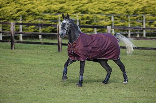 Horseware Amigo Hero ACY Lite 0g Regendecke Atlantic Blue (140) -