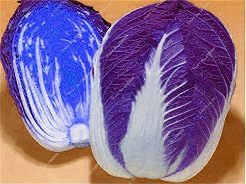 200pca / sac Pak Choi Bok Choy chinois couleur différente Graines de chou de légumes Graines Easy Grow