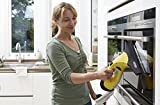Kärcher WV2 Premium Window Vac