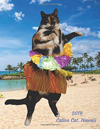 2019 Calico Cat Hawaii: Weekly Planner Large Size 8.5 x 11 Organizer Diary with Goal Setting & Gratitude Sections (Nature and Animals, Band 8)