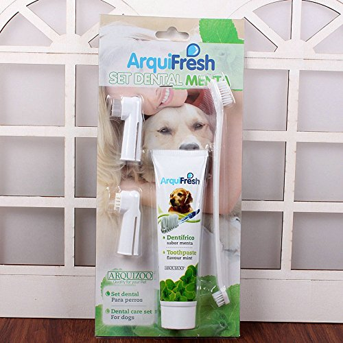 Darpy (TM) 2016Hot Sale 3PCS Bürsten Hund Katze Haustier Hygiene Zähne Care Zahnbürste Zahnpasta Hund Zahn Reinigung Hund Gesundheit Supplies - 2