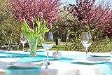 AmaCasa Vlies Tischläufer Türkis 23cm/25 Meter Flower Vlies Tischband Hochzeit Kommunion - 4