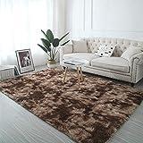 XOCKYE Modern Style Teppiche Super Plüsch Soft Touch Boden Fluffy Shaggy Rug - Chunky Pile - Home Wohnzimmerzubehör - 100% Polyester (9cm Silber)@Kaffee_50 * 80 cm