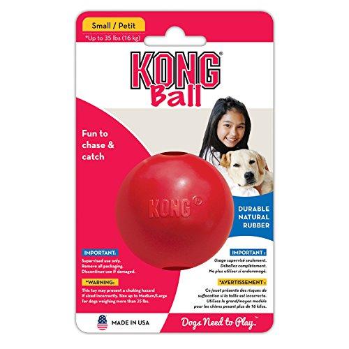 Paulchen Kong Spielball (M) 15610 (Kong Ball Hundespielzeug)