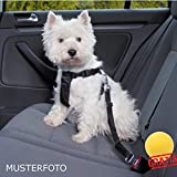 TRIXIE Friends On Tour Auto-Geschirr Für Hunde+BALL Gratis Nylongeschirre Hundegeschirre (S(30-60 cm für z. B.: West Highland Terrier))