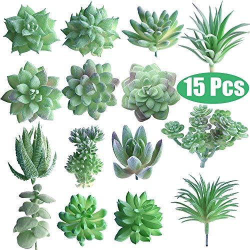 FEPITO 15 Pcs Artificielles Plantes Succulentes Vert Sans Empotage Faux Fleur Succulentes Mini Echeveria Pics Tiges en Vrac pour La Maison Intérieur Fée Jardin Décorations