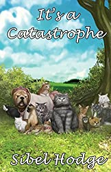 It's a Catastrophe by Sibel Hodge (2012-11-19)