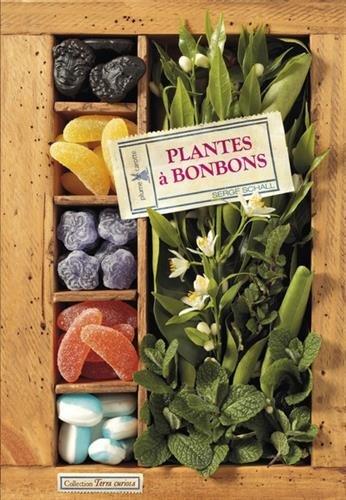 Plantes à bonbons