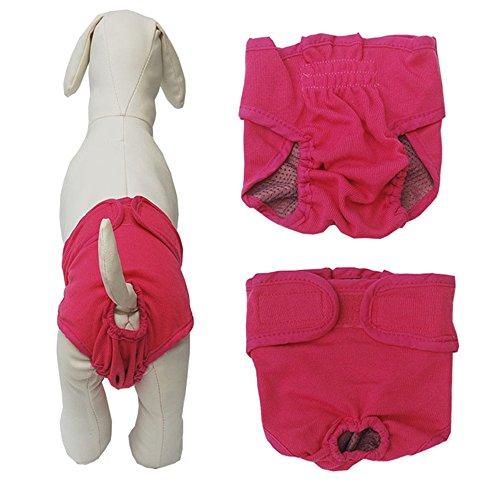 yakef Hund Katze Windeln Baumwolle Unterhosen Pants Waschbar Wiederverwendbar Sanitär Panty mit Klettverschluss für weibliche Hunde (Hundewindeln Männliche Waschbar Großen)
