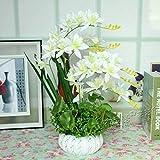 Ywqwdae Künstliche Blumen Home Decor? Brautsträuße? Orchidee? Keramikvasen? (Farbe : Wie Gezeigt, Größe : Einheitsgröße)