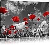 Wundervolle Wiese mit roten Blumen Schwarz/Weiß, Format: 100x70 auf Leinwand, XXL riesige Bilder fertig gerahmt mit Keilrahmen, Kunstdruck auf Wandbild mit Rahmen, günstiger als Gemälde oder Ölbild, kein Poster oder Plakat