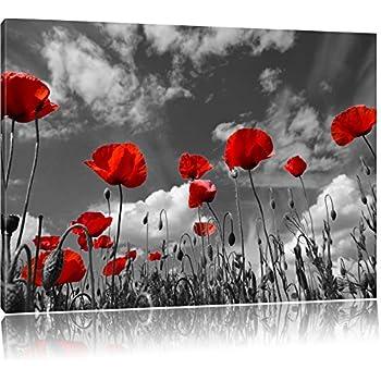 Wundervolle Wiese mit roten Blumen Schwarz/Weiß, Format: 100x70 auf ...