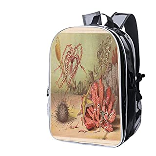 High-end Custom Laptop Backpack-Leisure Travel Backpack Echinoderm, Lithograph, published in 1868 Water Resistant-Anti Theft - Durable -Ultralight- Classic-School-Black