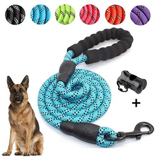 5 FT Starke Hundeleine mit Bequemen Gepolsterten Griff, Starke Reflexnähte der Trainingsleine für Sicherheit Nachts, eignet für Alle Größe Hunde (Blau)