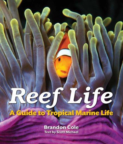 Reef Life: A Guide to Tropical Marine Life por Brandon Cole