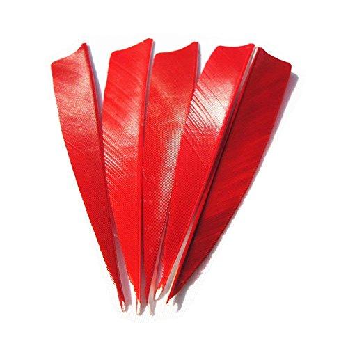 MS JUMPPER frecce Piume 10,2cm Vera Turchia Feather Destra impennaggio per DIY Caccia Target Shaft (Confezione da 25), Sandali Adventure Seeker, Punta Chiusa - T - Bambini